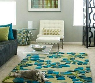 Carpet Cleaner Tucson | Reliabe. Affordable. Insured. | Mr. Carpet Cleaner